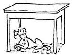 pod_stolom.jpg